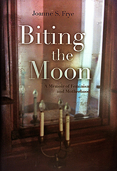 cover of biting the moon